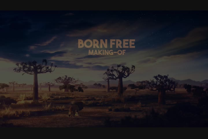 Bruno Monteiro, Paulo Garcia, Daniel Salles - - Born Free Foundation