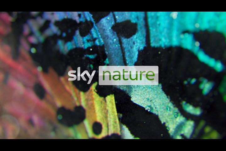 Sky Nature idents - Sky Nature - Sky