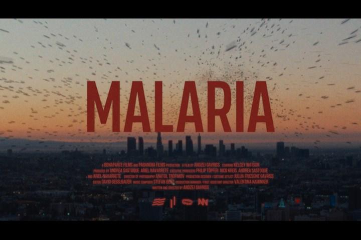 MALARIA - Bonaparte Films & Paranoiia Productions - houselessnothomeless.info