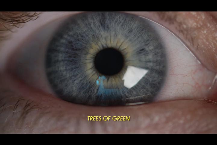 I SEE TREES OF GREEN - SoapOpera Fanzine - SoapOpera Fanzine