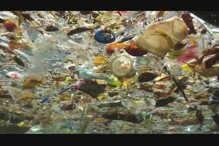 Trash Isles - LADBiible/The Plastic Oceans Foundation - LADBiible/The Plastic Oceans Foundation
