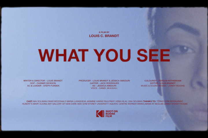 WHAT YOU SEE - - Louis C. Brandt
