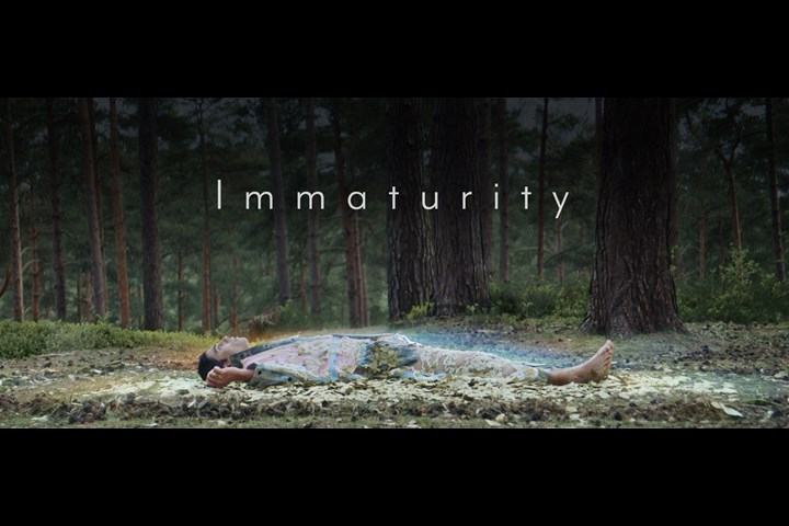 Immaturity - Future Sins - David Cottington