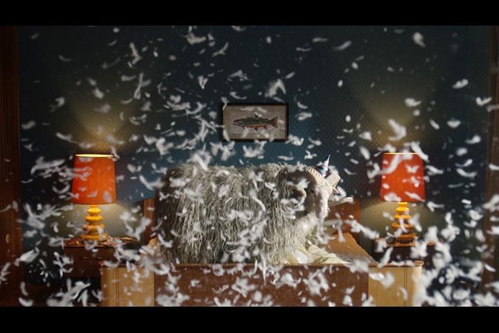 DEICHBRAND x Viva con Agua | Festival At Home - panamono GmbH - DEICHBRAND