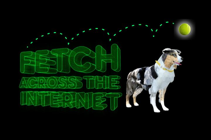 Fetch Across the Internet - Mars Petcare - Pedigree