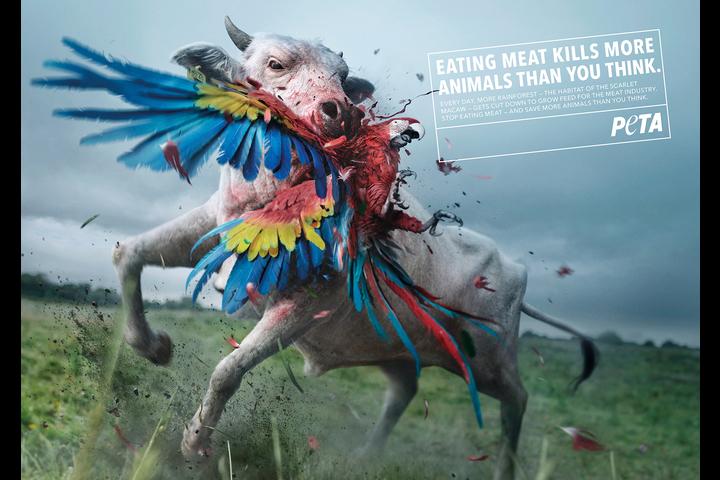 Killer Cows - Non-Profit - Peta Deutschland e.V.