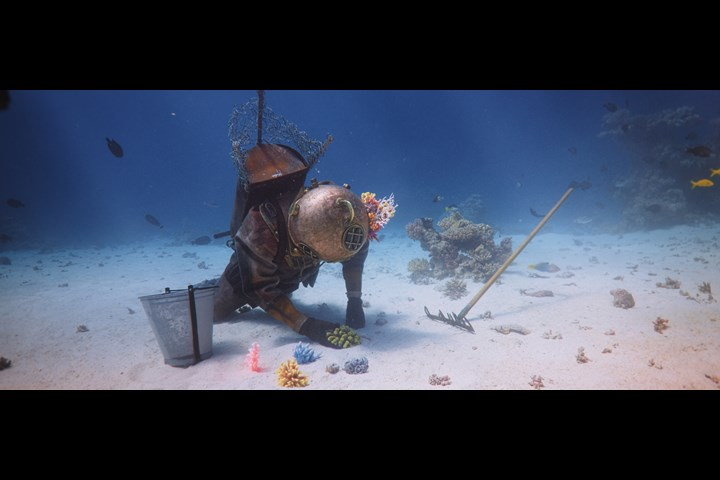 The Coral Guardian - Filmakademie Baden-Württemberg - Coral Reefs