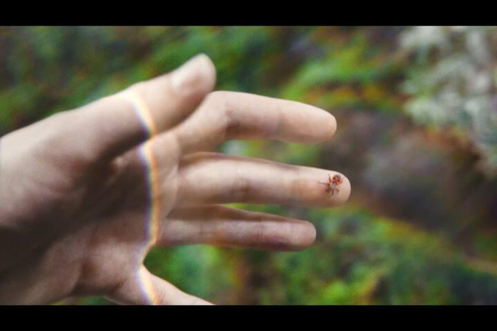 Choose Future - Anorak Film - Napapijri x Zalando