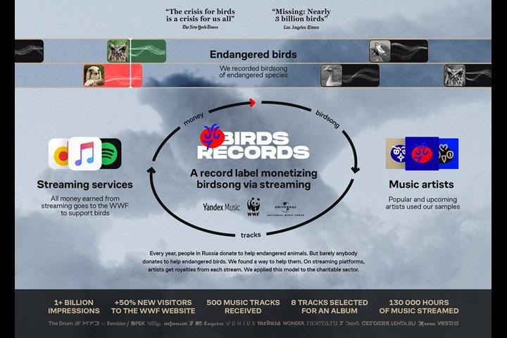Birds Records - WWF Russia - WWF Russia, Yandex. Music