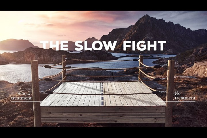 The Slow Fight - Wood protection - Sioo:x
