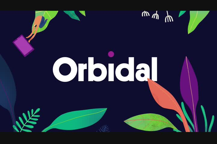 Orbidal Brand - SaaS Platform (Software) - Orbidal