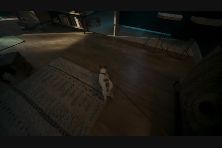 First Steps - Oculus - Oculus