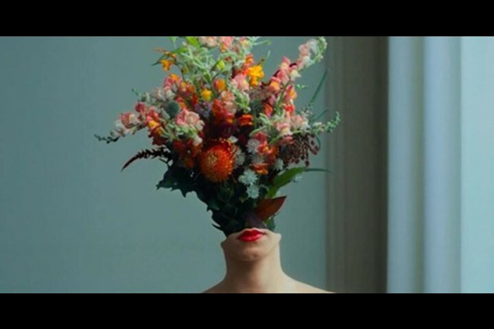 We need more flowers - - funnyhowfowersdothat.co.uk