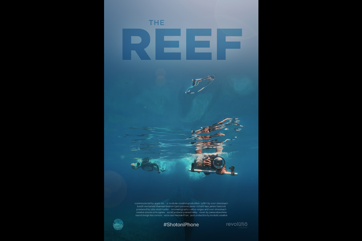The Reef - iPhone - Apple