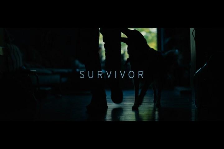 Survivor - SPA - SPA