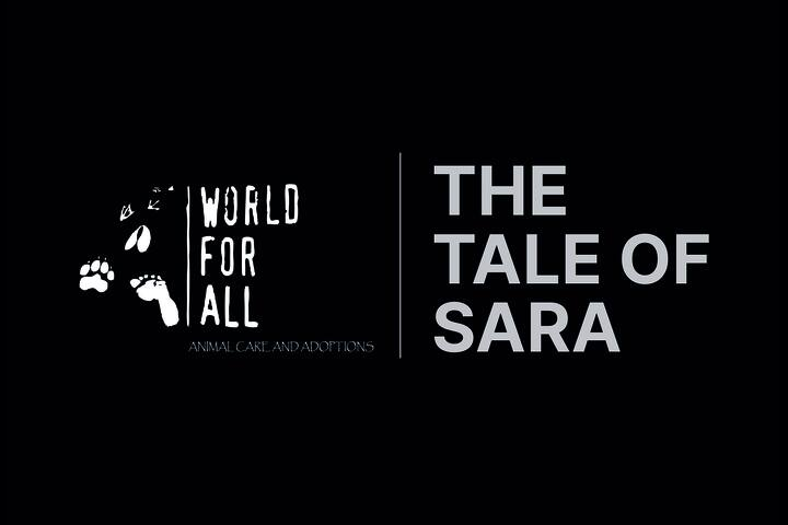 The Tale Of Sara - World For All Animal Care and Adoptions - World For All Animal Care and Adoptions