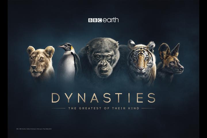 Dynasties - Dynasties Promo - BBC