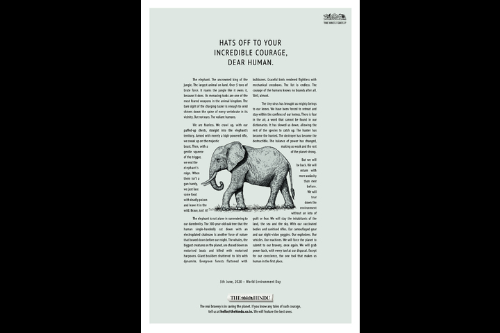 The Elephant - The Hindu - Publication - The Hindu - English Newspaper