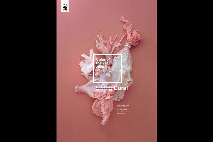 KeepLivingCoral - WWF - WWF