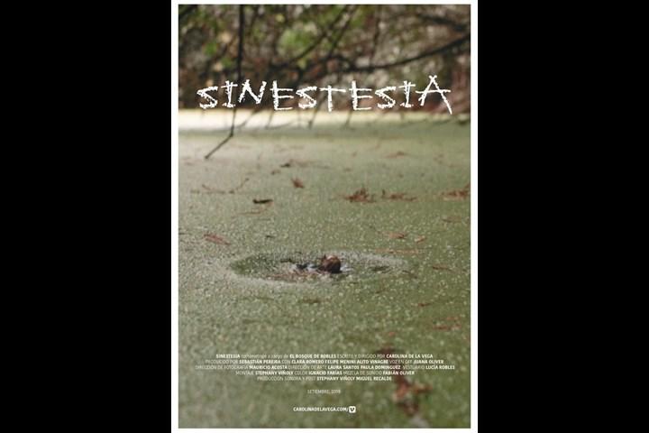 Sinestesia - Carolina de la Vega Susaeta - El bosque de Robles