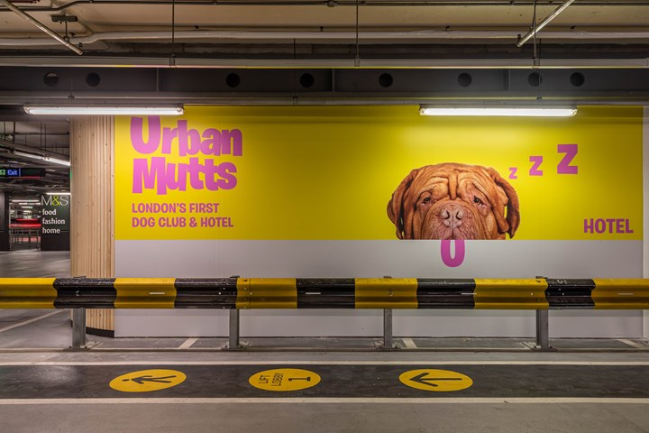 Urban Mutts - Dog Hotel & Day Spa - Urban Mutts