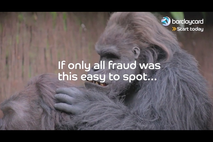 Monkey Business - Barclaycard - Barclaycard Fraud Fighter Tool