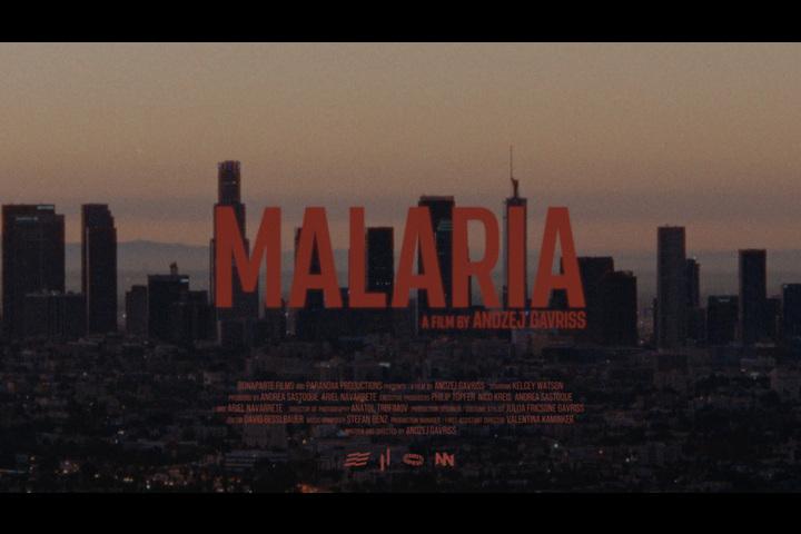 Malaria - https://www.houselessnothomeless.info - Social Averseness film