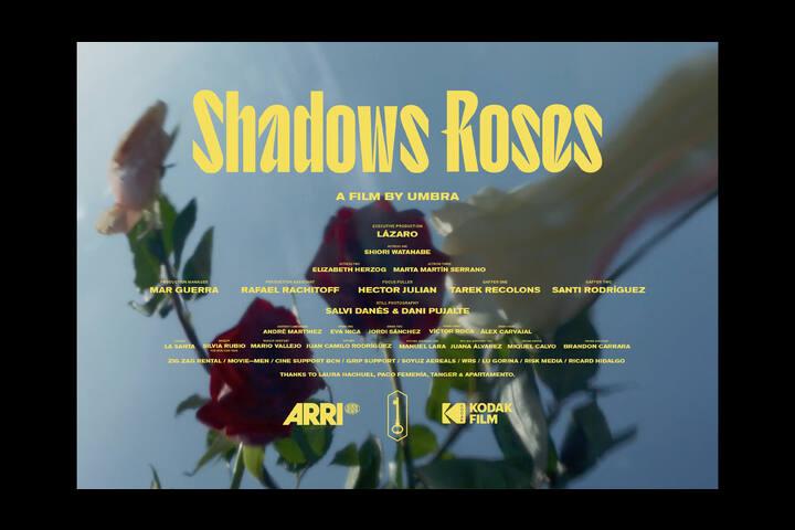 SHADOWS ROSES - LAZARO -
