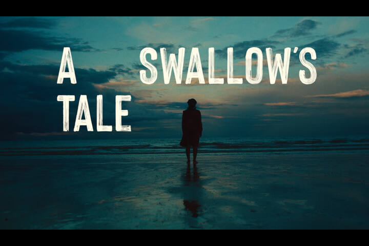 A Swallow's Tale - Africa Day - Department of Foreign Affairs