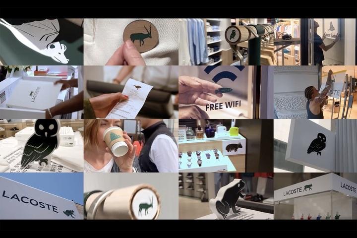Crocodile free - Retail - Lacoste
